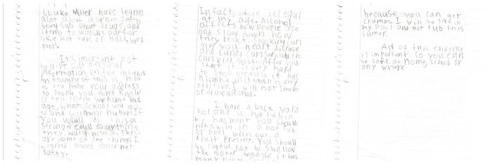 Luke Miller SafetyNet essay